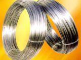 厂家大藤不锈钢供应商  经营范围(全软不锈钢线  半硬不锈钢线)