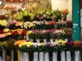 买开业花篮鲜花店预定玫瑰花店订花送花预定送货快