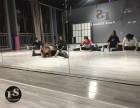 学舞蹈分配工作宝鸡费斯舞蹈教练班