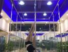 专业零基础爵士钢管等潮流舞蹈培训考证