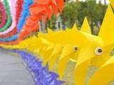 泉州油伞展览活动策划场地布置