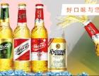 啤酒廠家 流通500ml大瓶啤酒招商加盟