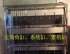 定制鱼缸,生态缸,系统缸,繁殖缸