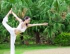 惠州惠阳淡水一家可以免费体验的专业瑜伽馆