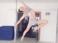 邢台钢管舞培训 钢管舞专业培训 聚星舞蹈学校