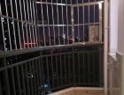 明光国际旁 优质小区 汇宇金城 干净整洁两房 地段优越 急租