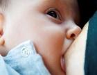 甘甜而源源不断的母乳是奢侈品