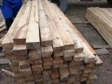 广西金生水建材提供大量建筑模板 松木模板批发供应