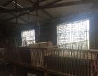 呼兰 哈尔滨松北区对青 厂房 700平米适合养猪