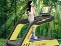 2017新款使用德国免涂硅油跑带交流变频电机环保跑步机