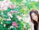湘潭婚纱摄影,湘潭易俗河蝴蝶树摄影