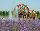 河南郑州红日专业生产大型景观水车防腐木碳化木水车电动水风车
