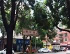 资金周转 急售小河锦江路 100平临街门面 月租金