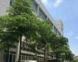 象屿保税区2楼1117.42平左右层高3.8米