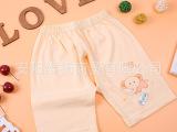 憨豆龙 夏季儿童短裤 宝宝夏装薄款80码-90码 1件代发