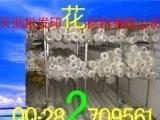 促销让利 天助TZ-环保网纱 丝网 印花