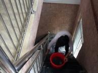 政务区家庭保洁、擦玻璃地板打蜡是怎么收费的哪家好