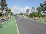 石家庄透水地坪 透水混凝土 彩色路面 透水路面 价廉质优