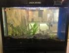 全新自动换水、清洁鱼缸