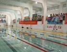 常年招收游泳学员