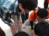 安庆拓展加旅游