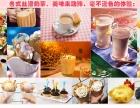 水果捞冰淇淋加盟6店合1,-四季旺销!