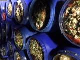 厦门市岛内收餐饮行业厨房泔水,潲水,剩菜剩饭,餐厨垃圾,