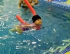 湖州亲子游泳贝贝鲸 和明星亲子游泳秀媲美
