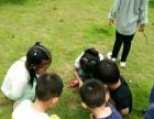 景洪市花蕾幼儿园开始招生啦,市区读经更方便