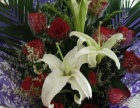 七七表白神器罗田520花坊为您打造爱的花样