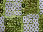 专业生产正方形双色亮片布料时尚箱包鞋材装饰布