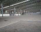 急租沌口开发区单一层钢结构厂房1500平方出租