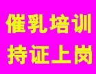 广州黄埔催乳师培训班多少钱,催乳师培训内容包括哪些