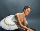 潍坊胜英少儿芭蕾舞团秋季班招生开始了