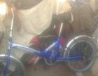 蓝色的飞鸽9新折叠自行车出售啦 9层新吧 图片那样的款车240卖