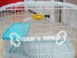 轉讓日本產的寵物籠子