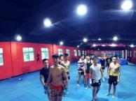 散打 搏击 职业拳手培训班 业余爱好学习班