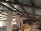 东陵 东陵区汪家镇汪家南村 厂房 4000平米适合养殖厂