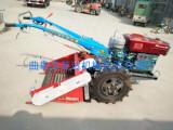 农用大蒜铺放收获机 手扶花生大蒜收获机 多功能小型农业机械