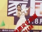 婚庆演出,小提琴,舞蹈,歌手