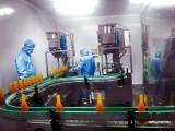 吉林水果蔬菜金銀花深加工項目,做成果汁果醋果酒罐頭酵素等