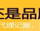 朝阳望京专业代理记账财税服务