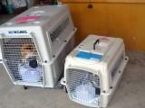 长沙托运宠物 长沙到周口宠物托运几点发车 几小时 多少钱