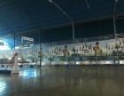 青山武钢青少年宫附近篮球培训