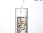 批发直筒双层耐热玻璃咖啡杯促销双层玻璃泡茶杯水杯