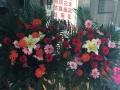 市区免费送货、花语轩鲜花店经营鲜花、花束、蛋糕预订
