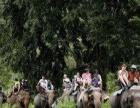 赣州到泰国曼谷、芭提雅、清迈七日游 赣州旅行社报价