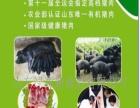 绿源有机猪肉 绿源有机猪肉 加盟招商