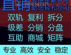 西安双轨制直销软件开发公司