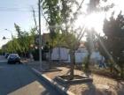 旅顺口区铁山镇 土地 200平米